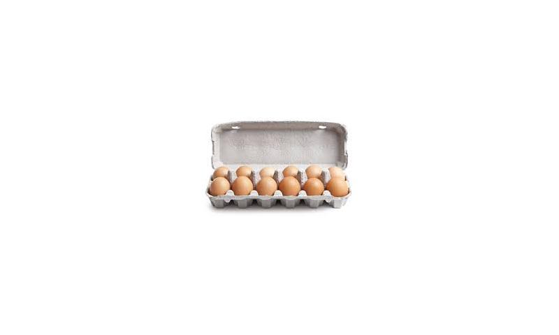 Eggs 20pk x12